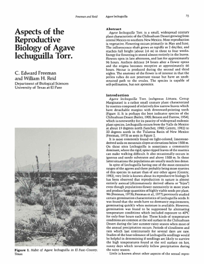 Aspects of the Reproductive Biology of Agave lechuguilla Torr